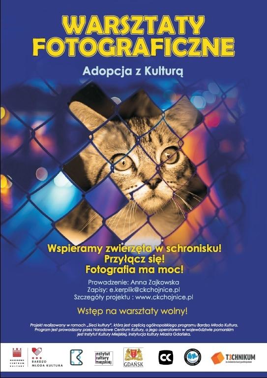 Adopcja z Kulturą